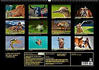 Lustig und verrückt - der ganz andere Tierkalender (Wandkalender 2019 DIN A2 quer) - Produktdetailbild 13