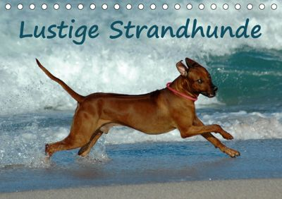 Lustige Strandhunde (Tischkalender 2019 DIN A5 quer), Anke van Wyk - www.germanpix.net