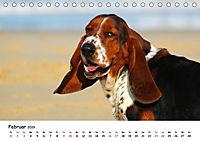 Lustige Strandhunde (Tischkalender 2019 DIN A5 quer) - Produktdetailbild 2