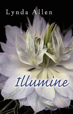 Lynda Allen: Illumine, Lynda Allen