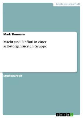Macht und Einfluß in einer selbstorganisierten Gruppe, Mark Thumann