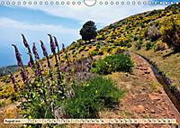 Madeira - blaues Wasser, grüne Berge, bunte Blumen (Wandkalender 2019 DIN A4 quer) - Produktdetailbild 8