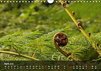 Madeira - Die Blumeninsel (Wandkalender 2019 DIN A4 quer) - Produktdetailbild 4