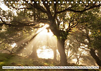 Madeira - eine Rundreise (Tischkalender 2019 DIN A5 quer) - Produktdetailbild 11