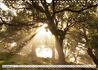 Madeira - eine Rundreise (Wandkalender 2019 DIN A4 quer) - Produktdetailbild 11