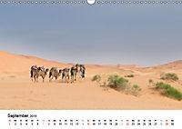 Märchenhaftes Marokko (Wandkalender 2019 DIN A3 quer) - Produktdetailbild 9