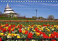 Magdeburg an der Elbe 2019 (Tischkalender 2019 DIN A5 quer) - Produktdetailbild 3