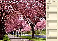Magdeburg an der Elbe 2019 (Tischkalender 2019 DIN A5 quer) - Produktdetailbild 4