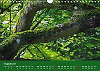 Magical Avebury and Stonehenge (Wall Calendar 2019 DIN A4 Landscape) - Produktdetailbild 8