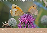 Magical Avebury and Stonehenge (Wall Calendar 2019 DIN A4 Landscape) - Produktdetailbild 6