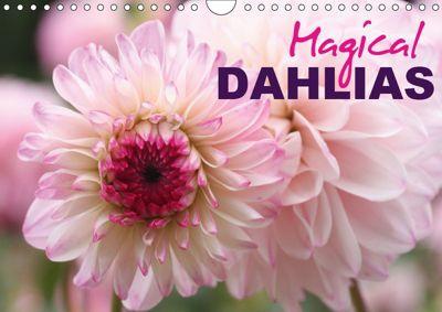 Magical Dahlias (Wall Calendar 2019 DIN A4 Landscape), Gisela Kruse