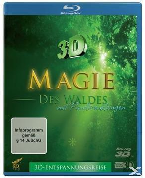 Magie des Waldes 3D-Edition