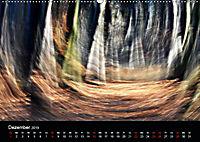 Magischer Wald (Wandkalender 2019 DIN A2 quer) - Produktdetailbild 12