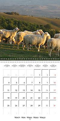 Magnificent Tuscan landscapes (Wall Calendar 2019 300 × 300 mm Square) - Produktdetailbild 3
