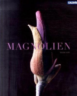 Magnolien, Oliver Kipp