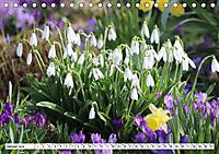 Makroblüten (Tischkalender 2019 DIN A5 quer) - Produktdetailbild 1