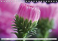 Makroblüten (Tischkalender 2019 DIN A5 quer) - Produktdetailbild 8