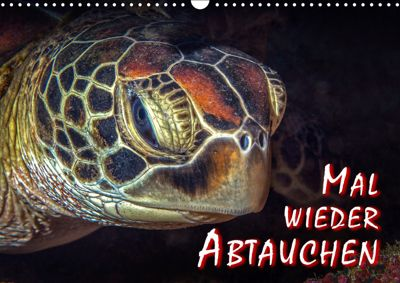 Mal wieder Abtauchen (Wandkalender 2019 DIN A3 quer), Dieter Gödecke