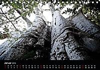 Malawi (Tischkalender 2019 DIN A5 quer) - Produktdetailbild 1
