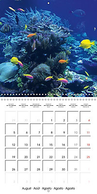 Maldives - Sun, water and beach (Wall Calendar 2019 300 × 300 mm Square) - Produktdetailbild 8