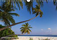 Malediven - Traumhaftes Paradies im Indischen Ozean (Wandkalender 2019 DIN A4 quer) - Produktdetailbild 8