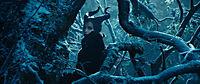 Maleficent - Die dunkle Fee - Produktdetailbild 4