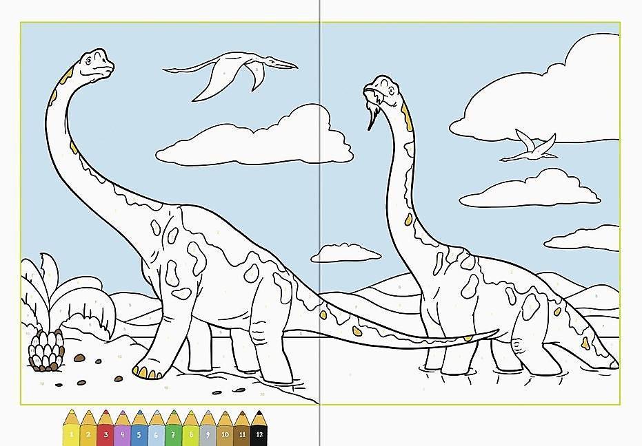 Malen Nach Zahlen Dinosaurier Buch Bei Weltbildde Bestellen