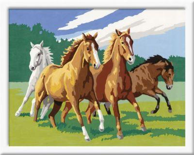 Malen nach Zahlen - Jeder kann malen (Mal-Sets), Bildgrösse: 24 x 30 cm: Wildpferde