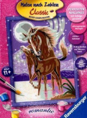 Malen nach Zahlen - Romantik Pferdegeflüster