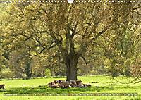 Malerische Cotswolds (Wandkalender 2019 DIN A3 quer) - Produktdetailbild 10