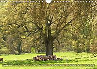Malerische Cotswolds (Wandkalender 2019 DIN A4 quer) - Produktdetailbild 10