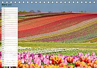 Malerischer Spaziergang durch Meerbusch (Tischkalender 2019 DIN A5 quer) - Produktdetailbild 3