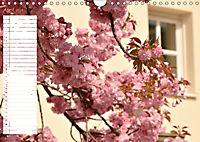 Malerischer Spaziergang durch Meerbusch (Wandkalender 2019 DIN A4 quer) - Produktdetailbild 4