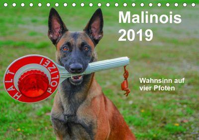 Malinois - Wahnsinn auf vier Pfoten (Tischkalender 2019 DIN A5 quer), Alexander Trocha