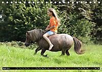 Malu Schumacher Mein Leben ist (k)ein Ponyhof ! (Tischkalender 2019 DIN A5 quer) - Produktdetailbild 4