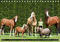 Malu Schumacher Mein Leben ist (k)ein Ponyhof ! (Tischkalender 2019 DIN A5 quer) - Produktdetailbild 7