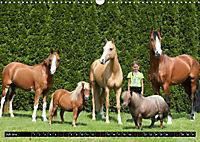 Malu Schumacher Mein Leben ist (k)ein Ponyhof ! (Wandkalender 2019 DIN A3 quer) - Produktdetailbild 7