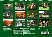 Malu Schumacher Mein Leben ist (k)ein Ponyhof ! (Wandkalender 2019 DIN A3 quer) - Produktdetailbild 13