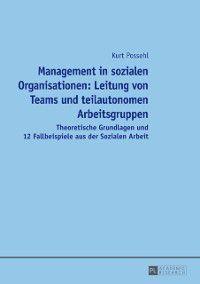 Management in sozialen Organisationen: Leitung von Teams und teilautonomen Arbeitsgruppen, Kurt Possehl