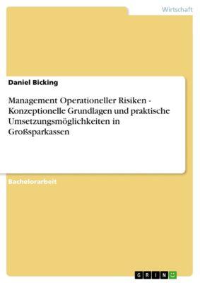Management Operationeller Risiken - Konzeptionelle Grundlagen und praktische Umsetzungsmöglichkeiten in Großsparkassen, Daniel Bicking