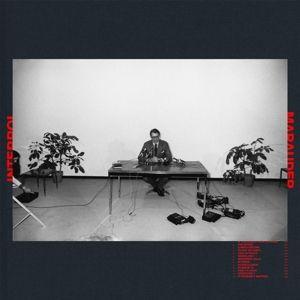 Marauder (Vinyl), Interpol