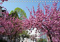 Marburg 2019 (Tischkalender 2019 DIN A5 quer) - Produktdetailbild 4
