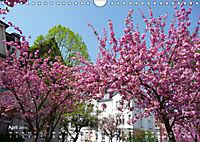 Marburg 2019 (Wandkalender 2019 DIN A4 quer) - Produktdetailbild 4