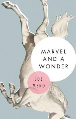 Marvel and a Wonder, Joe Meno