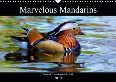 Marvellous Mandarins (Wall Calendar 2019 DIN A3 Landscape), N N