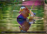 Marvellous Mandarins (Wall Calendar 2019 DIN A3 Landscape) - Produktdetailbild 8