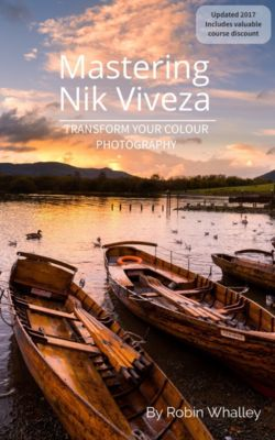 Mastering Nik Viveza, Robin Whalley