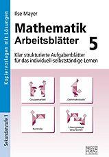 Arbeitsblätter Mathematik, 9. 10. Jahrgangsstufe Buch - Weltbild.de