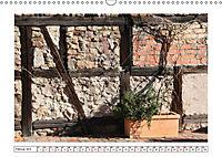 Mauerblümchen - Raus aus dem Schatten und rein in das Rampenlicht (Wandkalender 2019 DIN A3 quer) - Produktdetailbild 2