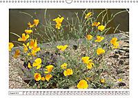 Mauerblümchen - Raus aus dem Schatten und rein in das Rampenlicht (Wandkalender 2019 DIN A3 quer) - Produktdetailbild 8